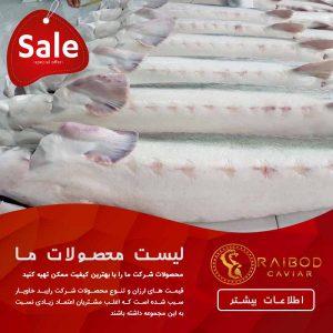 قیمت ماهی خاویار در سال 98